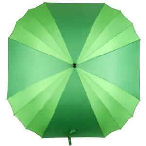 PAR 014 V paraguas muritz color verde