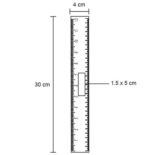 Regla de plástico de 30 cm.-5