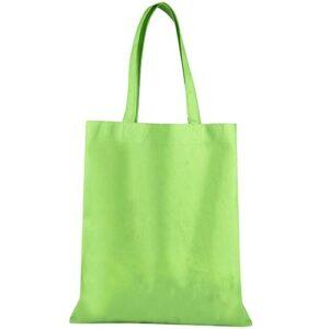 SIN 043 V bolsa toledo color verde